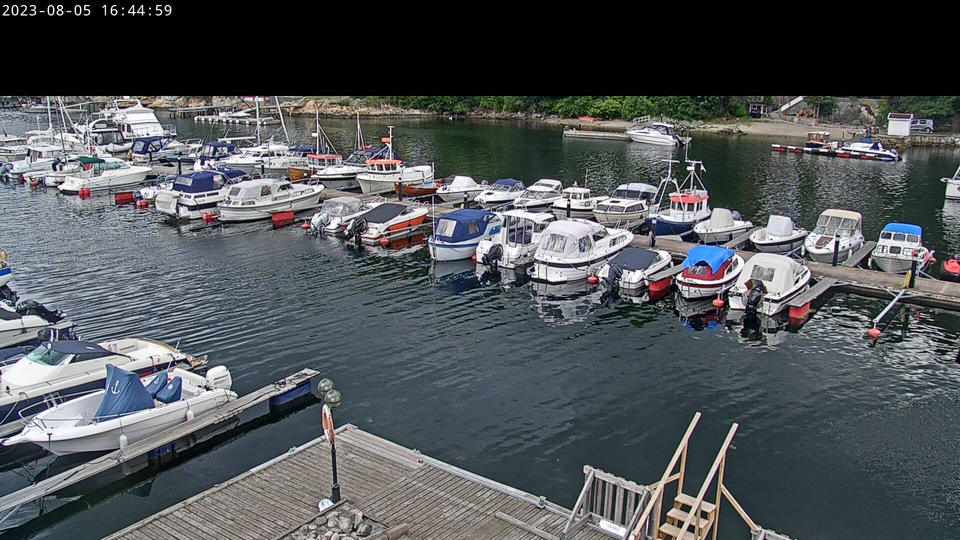 Webkamera indre havn